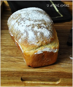 chleb-pszenny