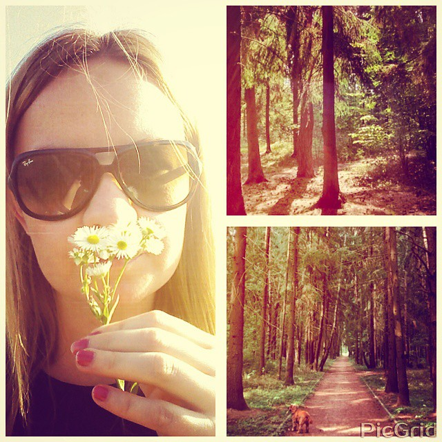 #walk #wood #spacer #nice #day #ilovebake #dog