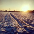 #winter #sunset #snow #nature #instapicture #intaphoto #photo