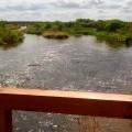 Pocztowkowe widoczki #widok #biebrza #slonce #woda #maj #widok #natura #park #narodowy #nature #relax #good #day #sunshine #view #river