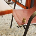 Wrobelek elemelek ? #ptaszek #wrobel #rynek #miasto #popoludnie #relax #bird