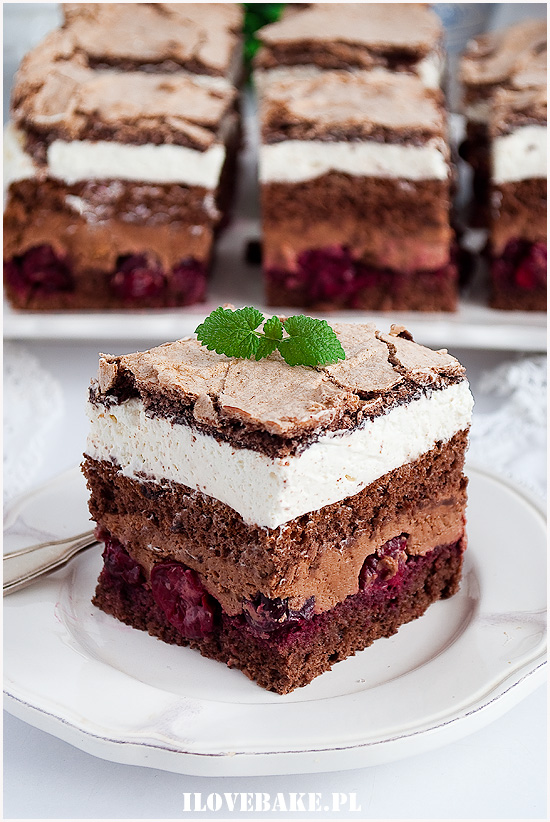 Ciasto Prasnalowe-5
